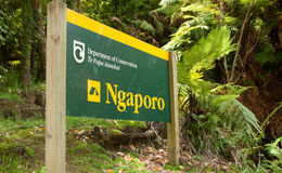 Camping de Ngaporo Río Kayaking de Whanganui imagenes de archivo