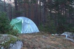 Camping de tente dans la forêt avec les arbres grands Photographie stock libre de droits