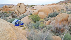 Camping de tente en Joshua Tree National Park - panorama Images stock