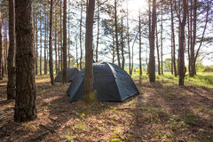 Camping in early morning. Sunny day near beautiful forest Stock Photos