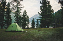 Camping et tente sous la forêt de pin Photo stock