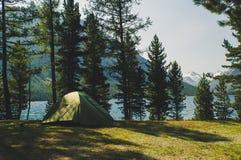 Camping et tente sous la forêt de pin Photo libre de droits