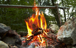 Camping fire royalty free stock photos
