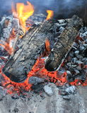 Camping fire. Close-up (warm background Royalty Free Stock Image