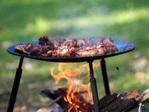 Barbeque. Camping food - barbeque outdoor in summer camp royalty free stock photography