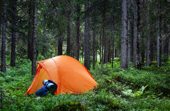 Camping in the Forest Royalty Free Stock Images