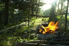 Camping in forest Stock Photography