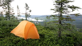 Camping in the Forest stock video footage