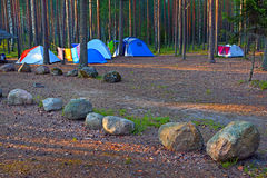 Camping in forest. Royalty Free Stock Photo