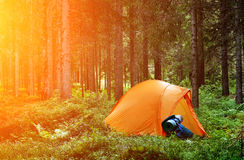 Camping in the Forest Stock Photo
