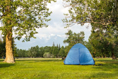 Camping in the Forest in sunny day Royalty Free Stock Photos