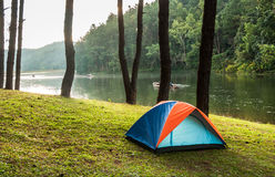 Camping in forest. Tent camping in forest royalty free stock photography