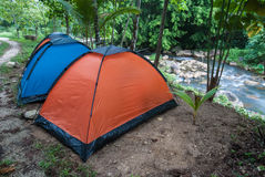 Camping. Green camping tent on sunny grassland.People camping near river at rainforest stock photography