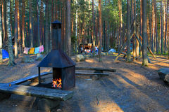 Camping ground in forest. Camping ground in pine forest with swing set royalty free stock images