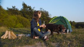 Camping. Happy woman traveling with dog in nature. Camping. Happy woman traveling with dog, sitting near tent on grass and drinking beer in nature stock video