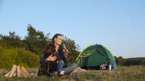 Camping. Happy woman traveling with dog in nature. Camping. Happy woman traveling with dog, sitting near tent on grass and drinking beer in nature stock footage