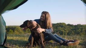 Camping. Happy woman traveling with dog in nature. Camping. Happy woman traveling with dog, sitting near tent on grass and enjoying summer in nature stock footage