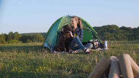 Camping. Happy Woman Traveling With Dog In Nature. Camping. Happy Woman Traveling With Dog, Sitting Near Tent On Grass And Enjoying Summer In Nature stock video