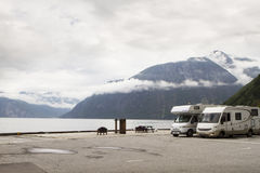 Camping holidays car on the parking near norwegian fjord, summer Stock Photo