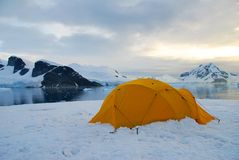Camping on ice. Tent on an ice floe in antarctica Royalty Free Stock Photography