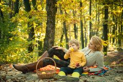 Camping with kids. Happy Mother and son with spending time outdoor in the autumn park. We like autumn time together. Childhood friendship and first memories royalty free stock images