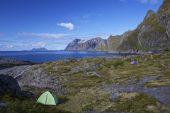 Camping on Lofoten Royalty Free Stock Photo