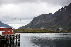 Camping - Lofoten Islands, Norway Stock Photos