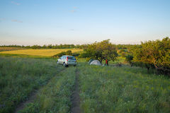 Camping among lush green grass and a wild pear trees in a prairi. E during sunset Stock Photography