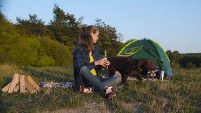 camping Mujer feliz que viaja con el perro en naturaleza almacen de video