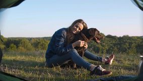 camping Mujer feliz que viaja con el perro en naturaleza almacen de metraje de vídeo