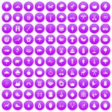 100 camping and nature icons set purple. 100 camping and nature icons set in purple circle isolated on white vector illustration stock illustration