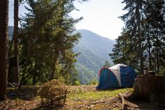 Camping in nature, in the mountains of Georgia, Borjomi in summer royalty free stock images