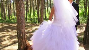 Camping Newlyweds Relax In Nature stock footage