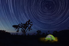 Camping at Night in Joshua Tree Park Royalty Free Stock Photography