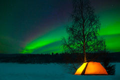Camping in the north. With the northern lights overhead - Aurora Borealis royalty free stock photos