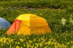 Camping Outdoors in the Mountains of Colorado Stock Photos