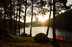 Camping. Pangoong sunshine Stock Photography