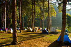 Camping park. On morning image Royalty Free Stock Images
