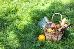 Camping. Picnic in nature. Picnic basket with wine fruit and other products in the thick green grass. Summer rest royalty free stock photo
