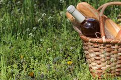 Camping. Picnic in nature. Picnic basket with wine fruit and other products in the thick green grass. Summer rest stock image