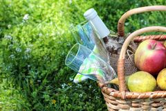 Camping. Picnic in nature. Picnic basket with wine fruit and other products in the thick green grass. Summer rest stock images