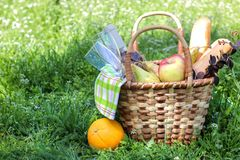 Camping. Picnic in nature. Picnic basket with wine fruit and other products in the thick green grass. Summer rest stock photography