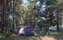 Camping at pine forest. Black tent, car with equipment. Family resting outdoors royalty free stock photos