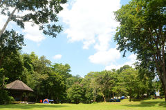 Camping place Royalty Free Stock Images