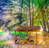 Camping place on mountain Kozara with smoke from camp fire Stock Image