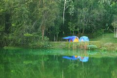 Camping on pond bank tropical forest royalty free stock image