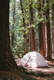 Camping in sanborn county park Stock Photography