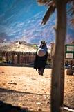 Camping - Sinai Royalty Free Stock Photography