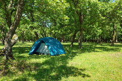 Tent in the shadow, in the forest. Camping site. Spring landscape Stock Photo