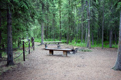 A camping site in a forest Royalty Free Stock Photography